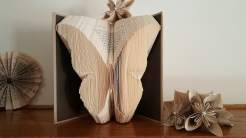 butterfly-my-book